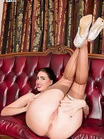 NHLP Central | NHLPCentral.com | Sample Free Gallery